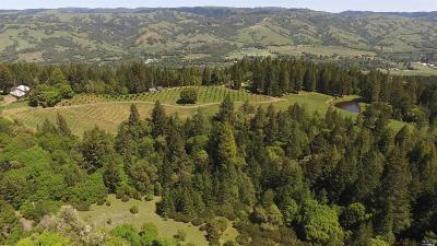 Mendocino County Farm & Ranch For Sale: 8851 Raven S Pike Road