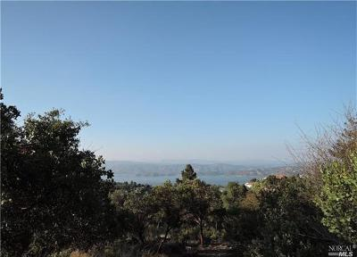 Kelseyville Residential Lots & Land For Sale: 9622 Marmot Way