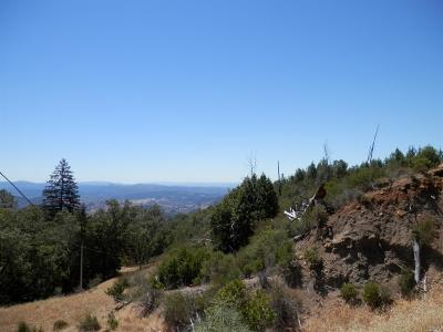 Healdsburg Farm & Ranch For Sale: 9510 Pine Flat Road