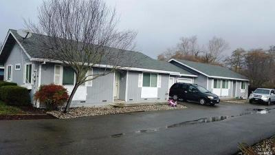 Willits Multi Family 2-4 For Sale: 125 Madden Lane