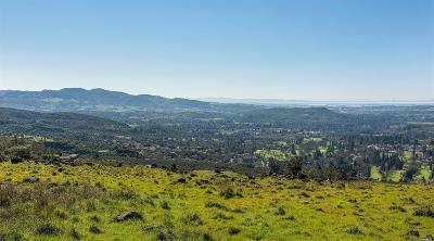 Napa Residential Lots & Land For Sale: 2387 Atlas Peak Road
