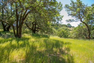 Residential Lots & Land For Sale: 930 Shiloh Oaks Road