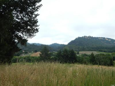 Calistoga Residential Lots & Land For Sale: 8339 Franz Valley Road