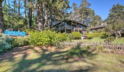 Gualala Single Family Home For Sale: 34591 South Highway 1