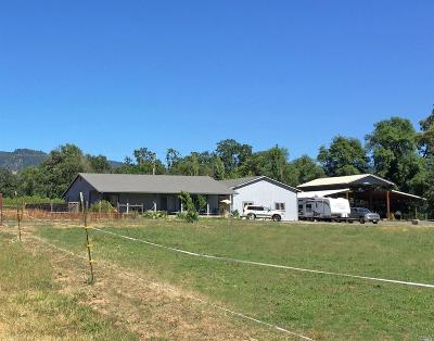 Potter Valley Farm & Ranch For Sale: 9701 East Side Potter Valley Road