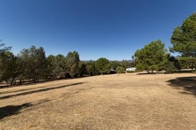 Hidden Valley Lake Residential Lots & Land For Sale: 16569 Hacienda Court