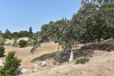 Napa Residential Lots & Land For Sale: 23 Pascale Place