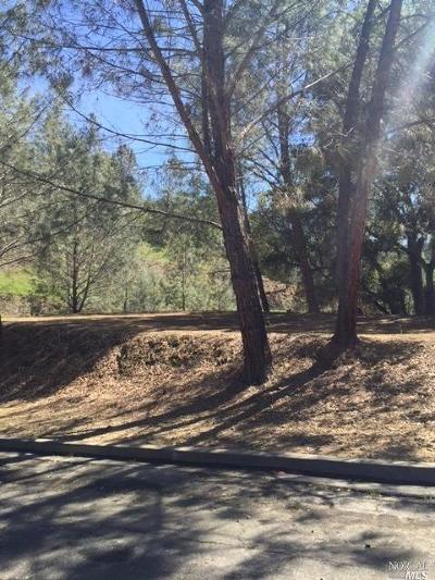 Napa Residential Lots & Land For Sale: Bahia Vista Court