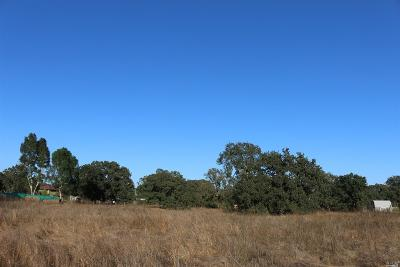 Residential Lots & Land For Sale: 1119 Merced Avenue