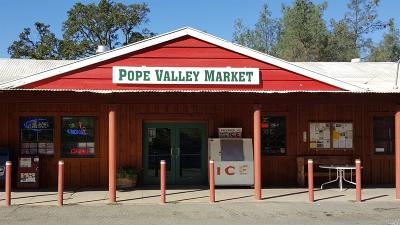 Napa County Commercial For Sale: 5850 Chiles Pope Valley Road