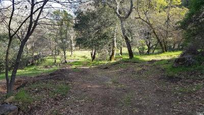Calistoga Residential Lots & Land For Sale: 1221 Tucker Road