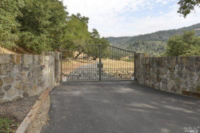 Calistoga Single Family Home For Sale: 3794 Silverado Trail