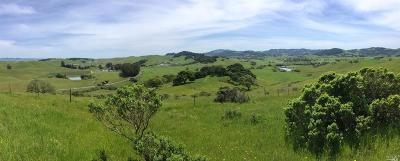 Petaluma Residential Lots & Land For Sale: 1001 Chileno Valley Road