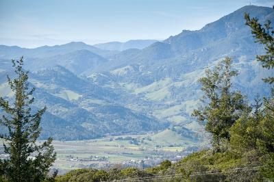 Calistoga Residential Lots & Land For Sale: 1777 Diamond Mountain Road