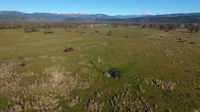 Covelo CA Residential Lots & Land For Sale: $550,000