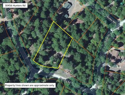 Residential Lots & Land For Sale: 30456 Hunters Road