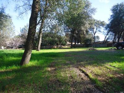 Residential Lots & Land For Sale: 1100 Echo Road