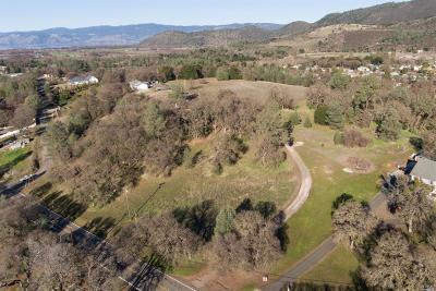 Kelseyville Residential Lots & Land For Sale: 5800 Wilkinson Road