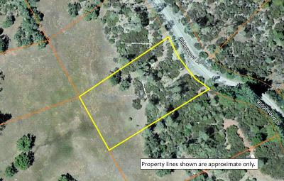 Residential Lots & Land For Sale: 29879 Ridgewood Drive