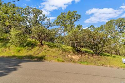 Pope Valley Residential Lots & Land For Sale: 2553 Harness Drive