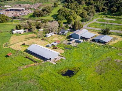 Farm & Ranch Contingent-Show: 3883 Petaluma Hill Road