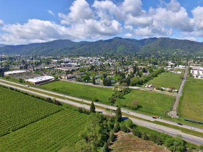 Mendocino County Residential Lots & Land For Sale: 675 North Orchard Avenue