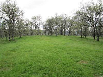 Clearlake CA Residential Lots & Land For Sale: $325,000