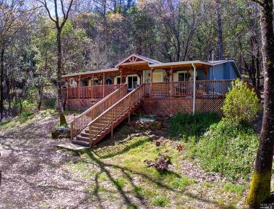 Upper Lake Single Family Home For Sale: 13011 Elk Mountain Road