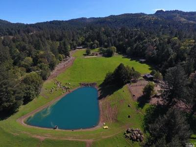 Healdsburg Farm & Ranch For Sale: 18501 Ida Clayton Road