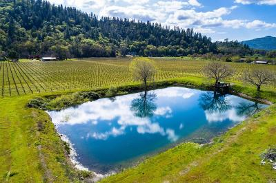 Lake County, Marin County, Mendocino County, Napa County, Sonoma County Residential Lots & Land For Sale: 2000 Clover Valley Road