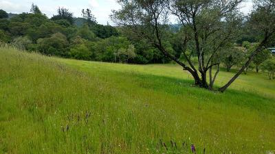 Healdsburg CA Residential Lots & Land For Sale: $2,699,899