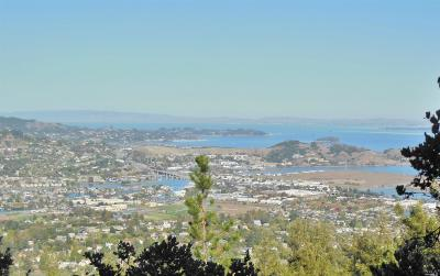 Marin County Residential Lots & Land For Sale: Summit Drive