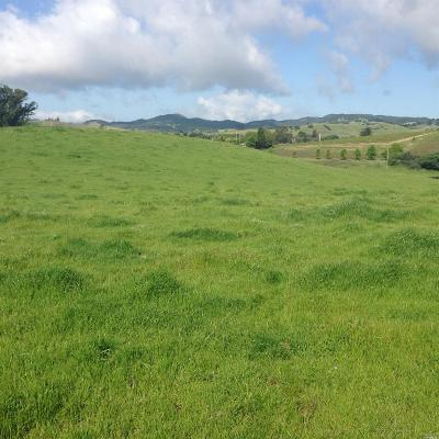 Napa County Residential Lots & Land For Sale: 5228 Old Sonoma Road