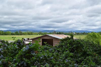 Farm & Ranch For Sale: 497 Laguna Vista Road