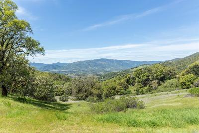 Redwood Valley Farm & Ranch For Sale: 7166 Northeast Black Bart Trail