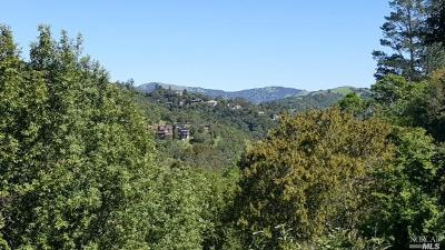 Marin County Residential Lots & Land For Sale: 640 Bolinas Road