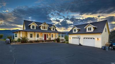 Napa Single Family Home For Sale: 50 Capell Valley Crst