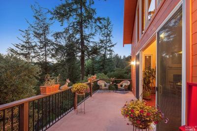 Forest Knolls Single Family Home For Sale: 161 Montezuma Avenue