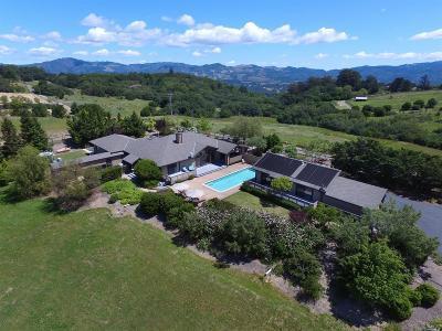 Glen Ellen Single Family Home For Sale: 125 Mountain Meadow