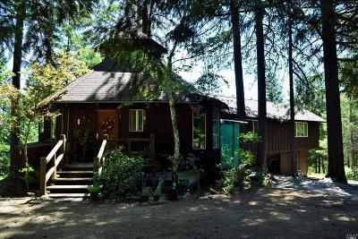 Upper Lake CA Single Family Home For Sale: $750,000