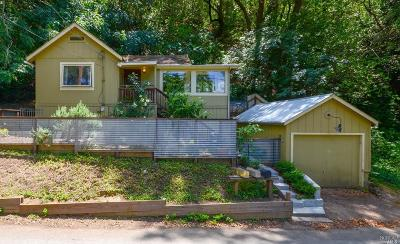 Healdsburg Single Family Home For Sale: 2217 North Fitch Mountain Road