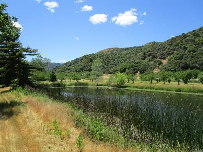 Upper Lake CA Farm & Ranch For Sale: $1,250,000