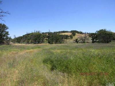 Lower Lake Residential Lots & Land For Sale: 9809 Rocky Creek Road