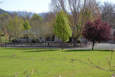 Lakeport Farm & Ranch For Sale: 3618 Hendricks Road