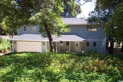 Kelseyville Single Family Home For Sale: 2772 Buckingham Drive