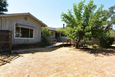 Lakeport Single Family Home For Sale: 3870 Hill Road East