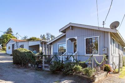 Sebastopol Single Family Home For Sale: 4623 Gravenstein Highway South