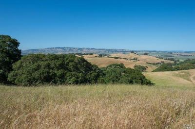 Petaluma Residential Lots & Land For Sale: I Street Extension Lot 1