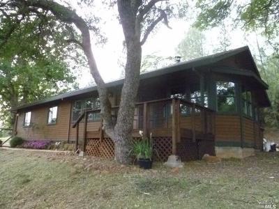 Lower Lake Single Family Home For Sale: 16934 Hofacker Lane
