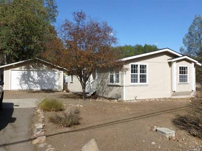 Pope Valley Single Family Home For Sale: 2426 Stagecoach Canyon Road